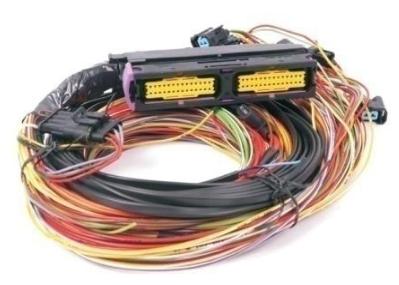 Kabelboom VSI-LPG 8-cyl. + IM conn. / zonder conn.