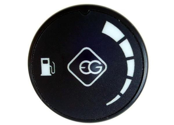 Europegas Umschalter LPG EG RGB v4 4-pin